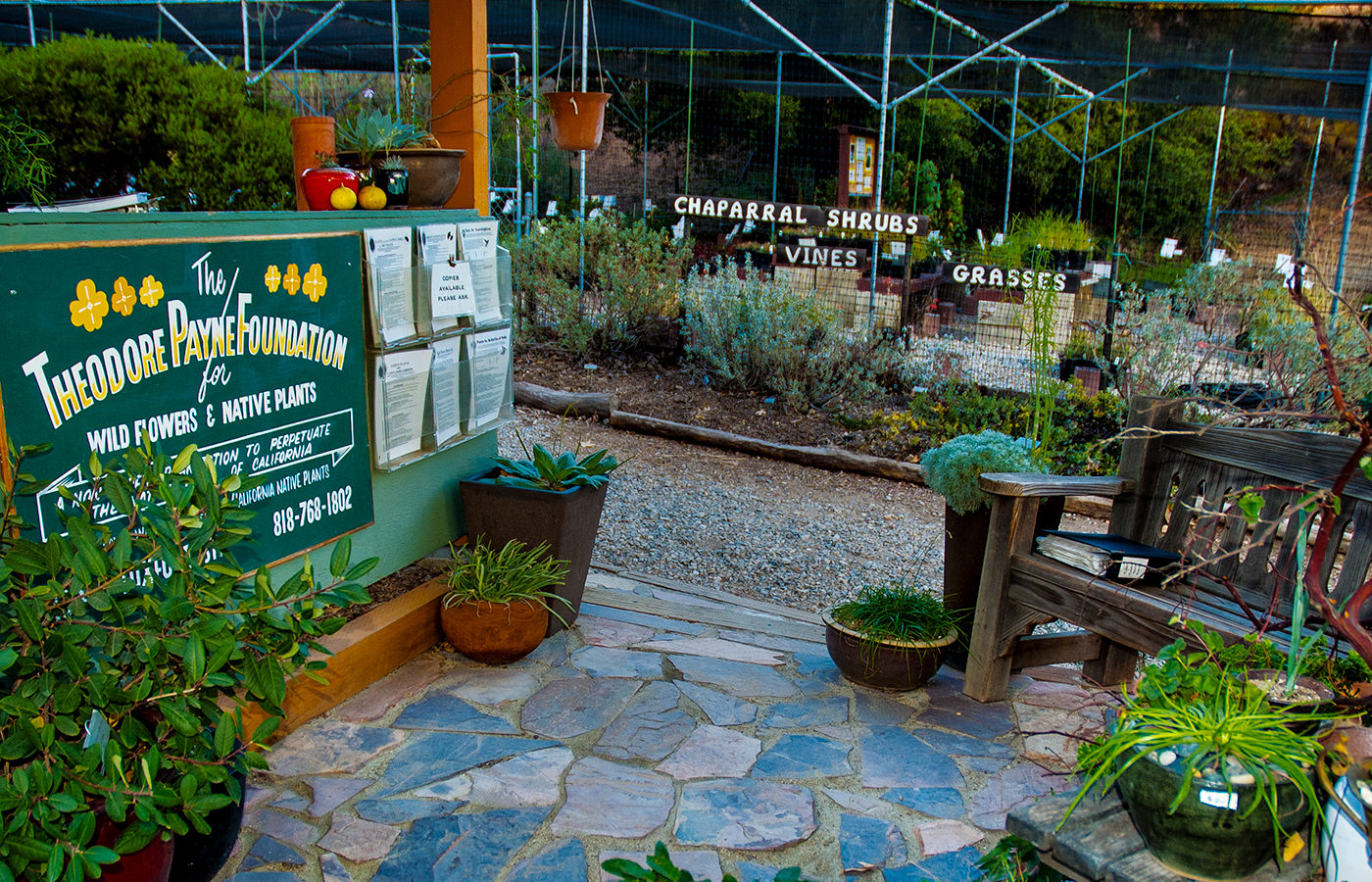 The Theodore Payne Foundation's native plant nursery.