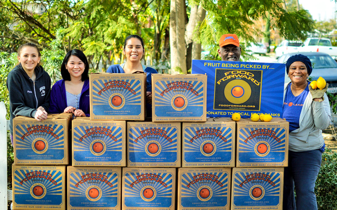 Food Forward volunteers with boxes of produce collected from a farmer's market